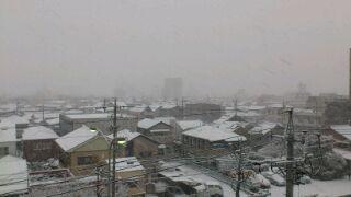 名古屋も積雪3cm
