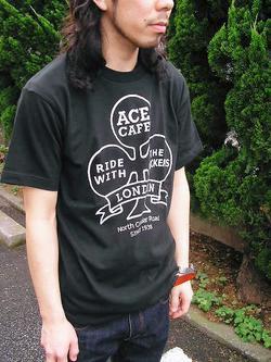 Ace1_1
