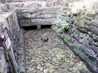 熱田神宮の裏奥深くに泉?