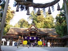 miwataisya